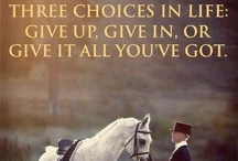 Quotes- Equestrian Inspiration