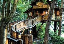 Treehouses / by Sherrie Berglin