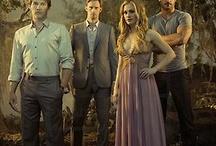 Tv and movie vampires / Buffy the vampire slayer, True blood, Vampire diaries, Twilight saga and so on..