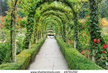 muriwai garden