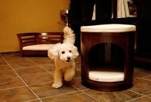 """sumainu style / スマイヌのストアコンセプトは""""愛犬との快適で上質な暮らしのご提案""""です。三井ホームリモデリング(株)にご協力いただき、そのような暮らしをイメージしてみました。"""