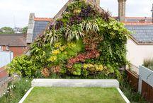 Vertcal gardens