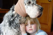 """Finalists in """"The Perfect Pet, part 2"""" / The six winning entries depicting the perfect pet! All images pinned and displayed are copyright protected by the individual photographer. Images may not be used or re-pinned unless authorized by the photographer."""