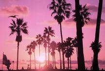 ☺Entertaining • PINK PARADISE