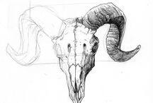 goat skull tattoo