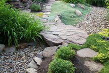Garden / Moje pohľady do záhrady