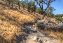 Hiking/Outdoors in Fairfield, CA. / Find the best hikes in and near Fairfield including detailed trail maps, guides, trail descriptions, Points of Interest (POIs) and GPS tracks / GPX data. User experiences and lots of ideal places to hike. Enjoy! #VisitFairfieldCA, #VisitCA, #Hiking