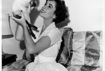 Famous Cats / Cats and their famous owners