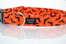dog & cat accessories