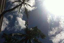 Hawaii vacation / Image de vacance
