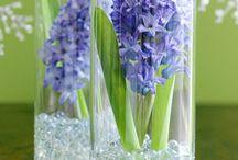 Květinové výzdoby / Aranžmá