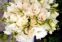 Flowers / Check out some of our favorite wedding flowers!