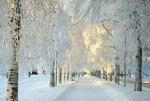 Ice Crystals, Snow and Winter