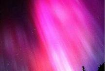 My purple heaven