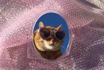 In glasses in glass