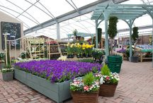 Introducing our new Tunbridge Wells Centre / Redevelopment of our brand new garden centre at Pembury is complete and our doors are open! We're so proud of it we couldn't help share some pictures..