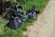 Képek a Rákóczi és a Dolinai u. menti takarításról. / Képek a Rákóczi és a Dolinai u. menti takarításról. http://www.pomaz.hu/news/906/a-f%EF%BF%BDld-napja