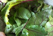 Ideas for using my fresh garden veggies / by Megan Prensner