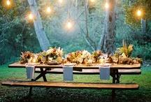 Wedding Decoration / Mood Ideas / by Stephanie Bolton