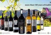 Vinos/ Wines