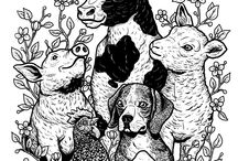 Animal love ❤️