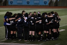Columbia University Rugby