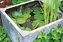 Water tank ponds / Water tank ponds