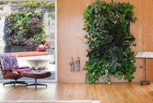 Gardens / vertical gardening / by DeeDee Goodwin