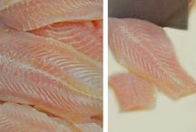 Making of Ono Island White Fish
