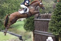 Burghley Horse Trials Inspiration