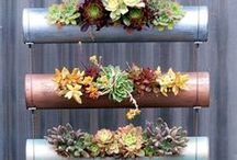 jardintaty