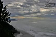 ♥ My Ocean ♥ / by Leslie Foster