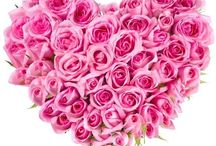 Flowers - Bouquet and Basket design Ideas / Find interesting flower bouquet and basket design ideas here. Also find some other interesting stuff about flowers
