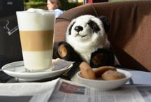 ViP - Very imporant Panda / We would like to tell you a story that actually happened. The little panda was forgotten by his family, and was not bored when we showed him the hotel. In the absence of his family he experienced a lot.