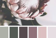 Fiji Wedding Color sheme / palette - wedding planning