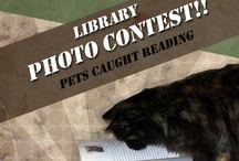 Photo Contests :)
