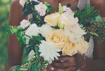 Novidades do Blog / Matérias novas no Blog Organizando Meu Casamento. Tudo que está acontecendo no mundo dos casamentos.