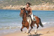 Horseriding Vejer de la Frontera