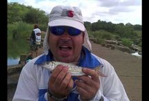 The Bass Challenge / The Bass Challenge. I bass fishing tournament in the Greater Gauteng that is host to Floattubes, Pontoons, Kickboats, Small Boats, Kayaks and more...