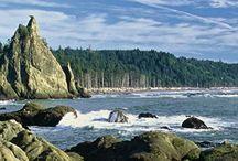 Salmon Coast / by Washington's Next Generation