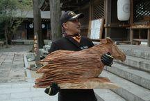 horse / by masaya
