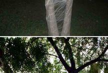 pók háló fa