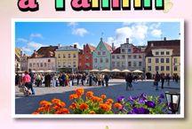 Viaggio Organizzato a Tallinn