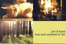 Fandoms | Hufflepuff
