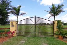 Polo get away / Polo places and things to do / by Florida Treasure Coast Real Estate