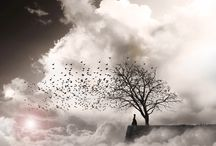 George CHRISTAKIS surrealismo