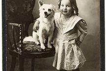 Animal & Pet Portraits