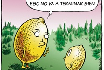 6.5 Spanish