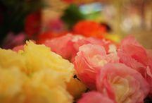 Kwiaty do domu / Kwiaty i kompozycje kwiatowe, które znajdują się w ofercie naszego sklepu.
