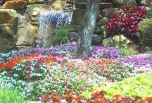 Gardens/Tuinen